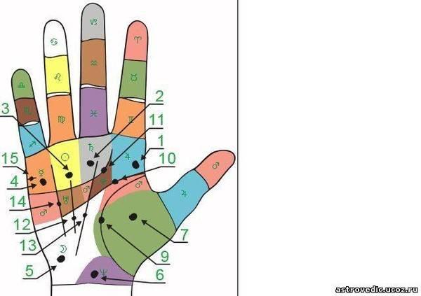 Приметы о родинках на руках — как их толкуют для женщин и мужчин