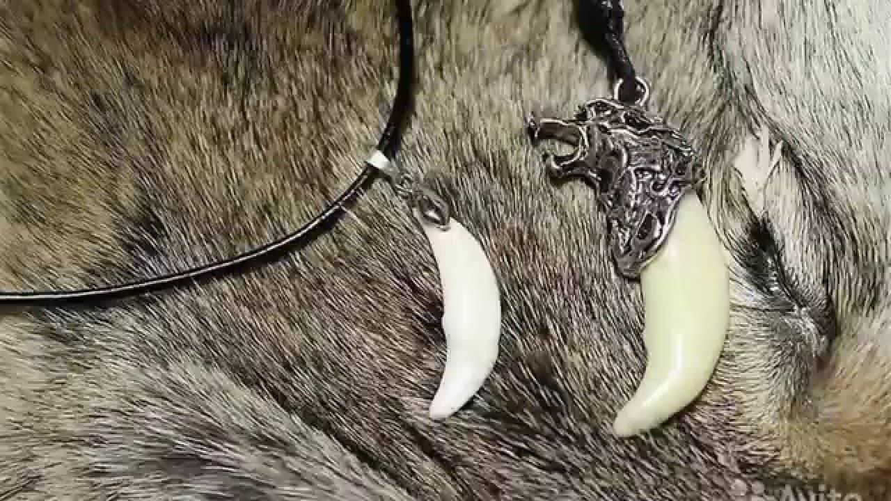 Волчий клык: значение амулета для мужчин и женщин. как выбрать