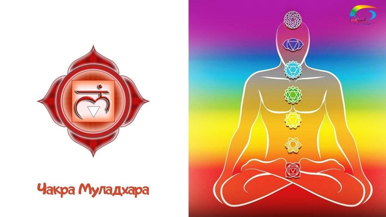 Чакра муладхара и ее воздействие на организм человека