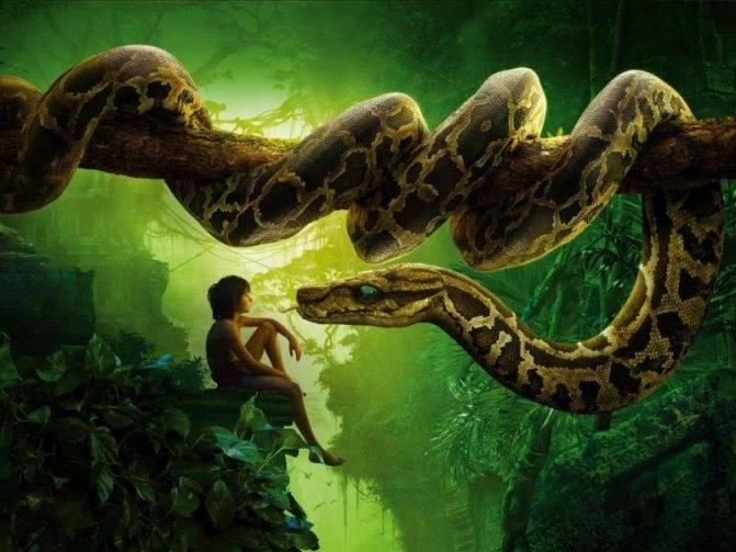 К чему снится змея?
