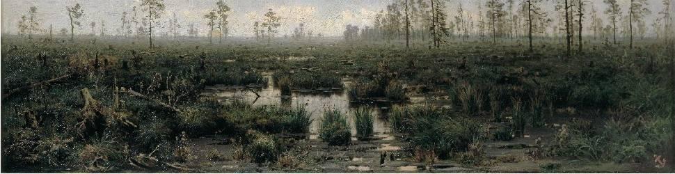Сонник болото грязь. к чему снится болото грязь видеть во сне - сонник дома солнца