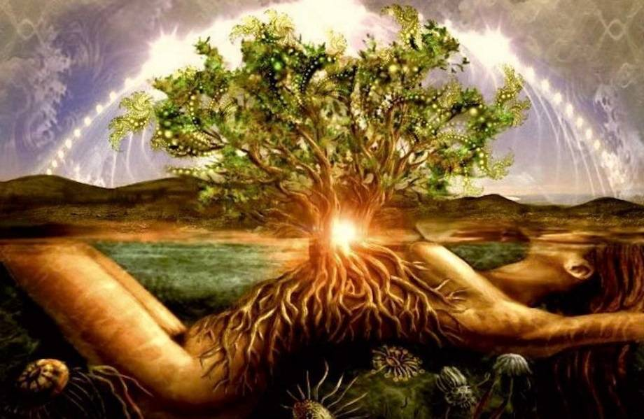 Почему душа воплощается 12 раз. реинкарнация души — как происходит перерождение людей и животных и как влияет на это карма