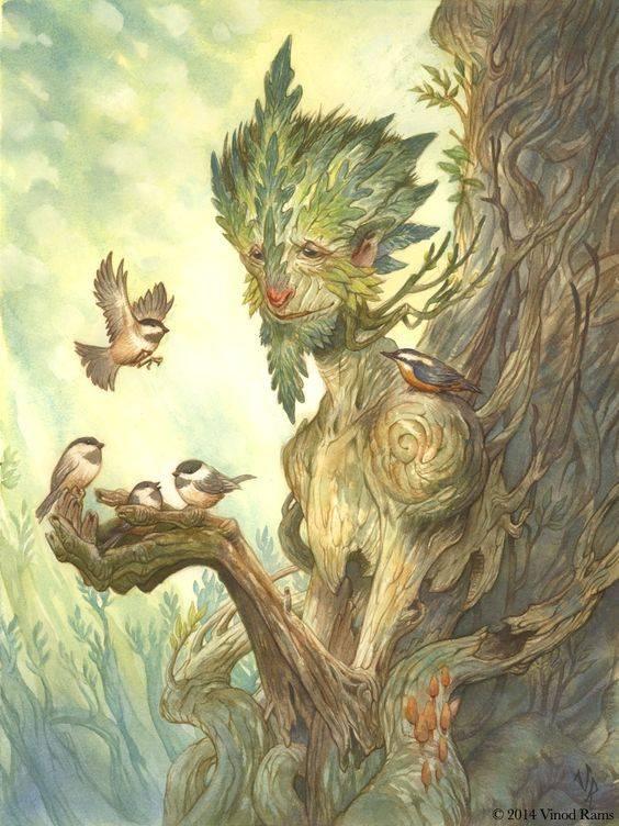 Вечнозелёный лес