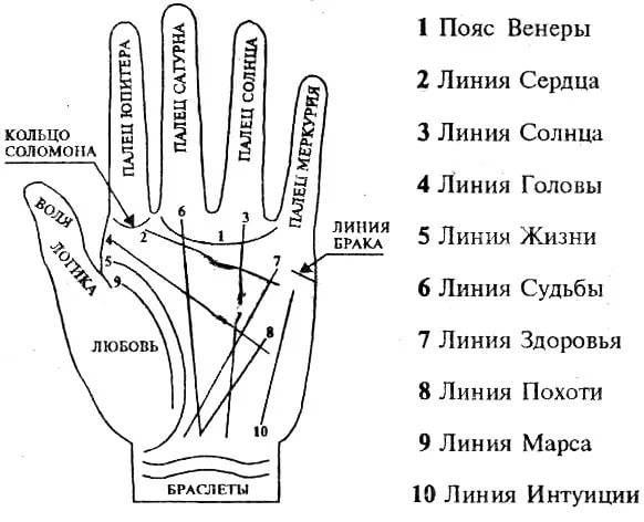 Хиромантия: линии на руке, расшифровка для начинающих