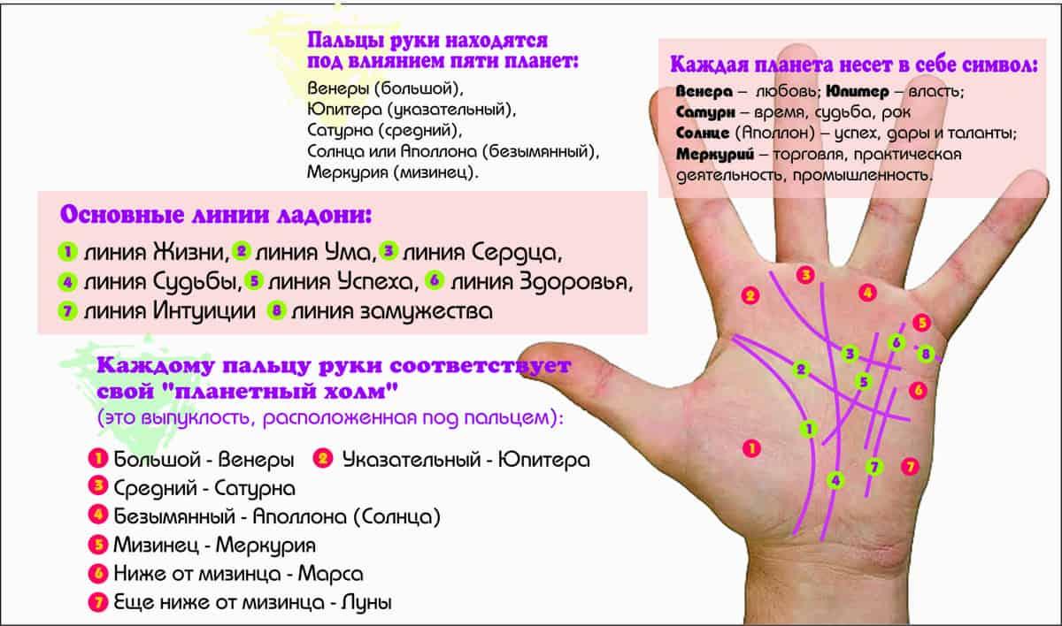 Гадание по руке — хиромантия для начинающих. гадание по руке: значение линий