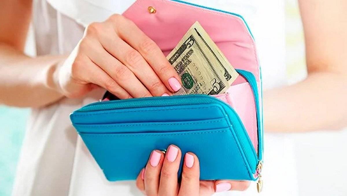 Какие кошельки притягивают деньги: форма и цвет, советы по выбору . милая я