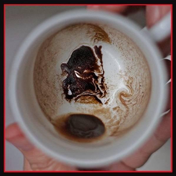 Гадание на кофейной гуще онлайн: магия, предсказания судьбы - yourspells