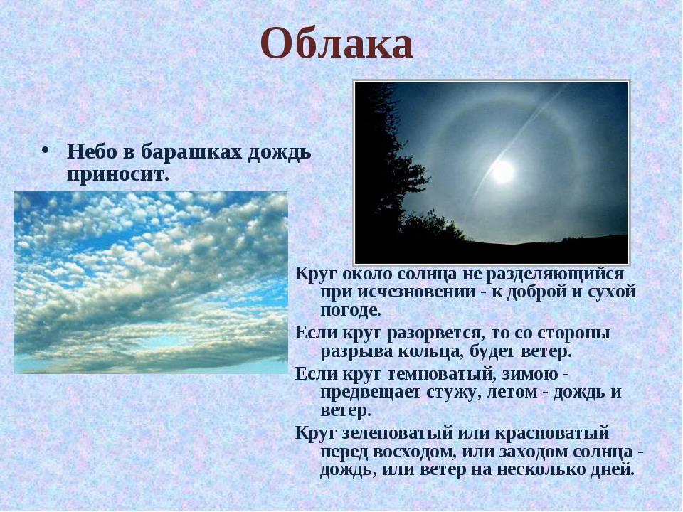 Народные приметы о погоде ▶ список примет и как они работают