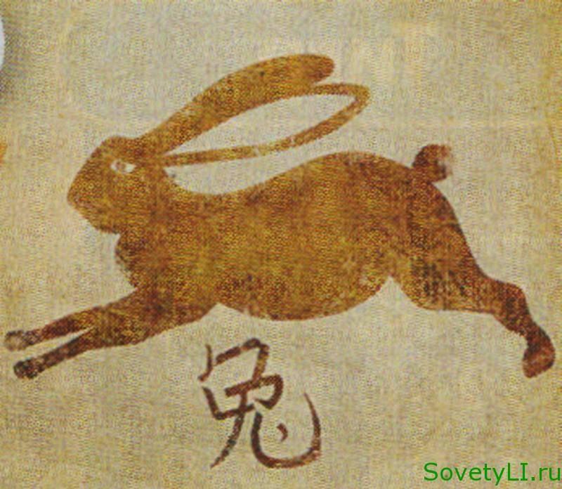 Кролик (заяц, кот) знак зодиака по восточному гороскопу, характеристика гороскоп знака кролика.