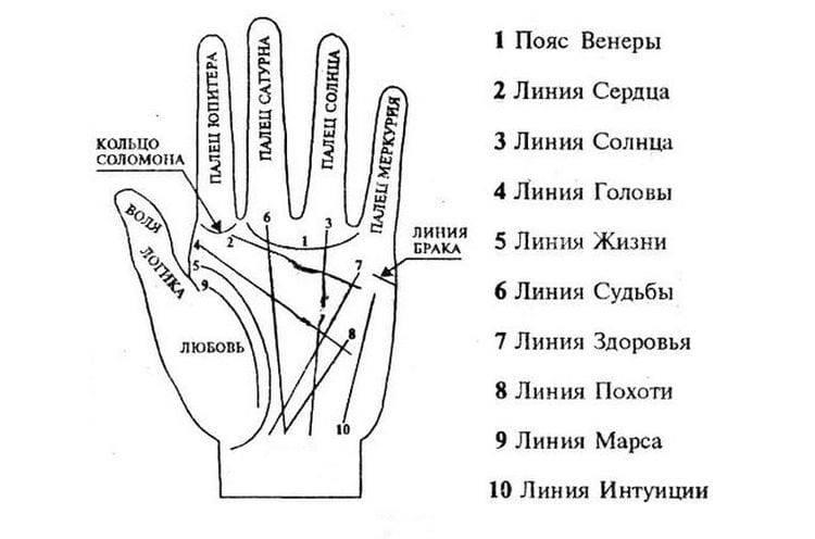 Линия интуиции на руке и её значение