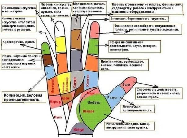 Родинки пальцах рук: значение для каждого пальца левой и правой руки