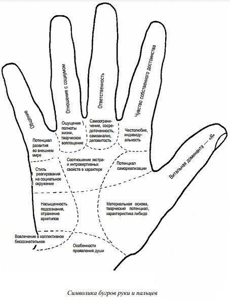 Хиромантия, пальцы на руках и их значение