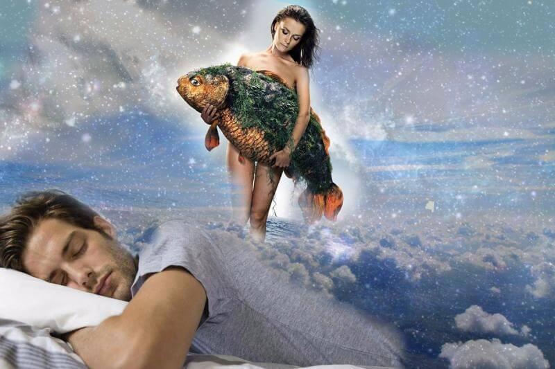 К чему снится живая рыба. сон о живой рыбе. что значит видеть живую рыбу во сне?