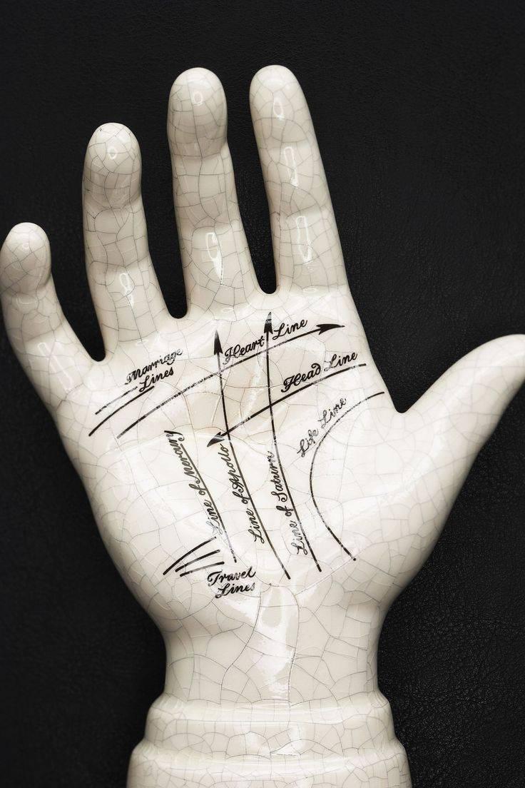 Как определить профессию по линии на руке: описание, фото