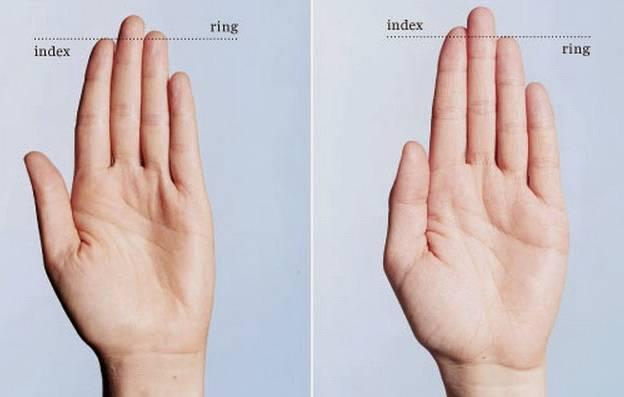 Длинные или кривые пальцы на руках — как узнать характер, толстые - все о суставах