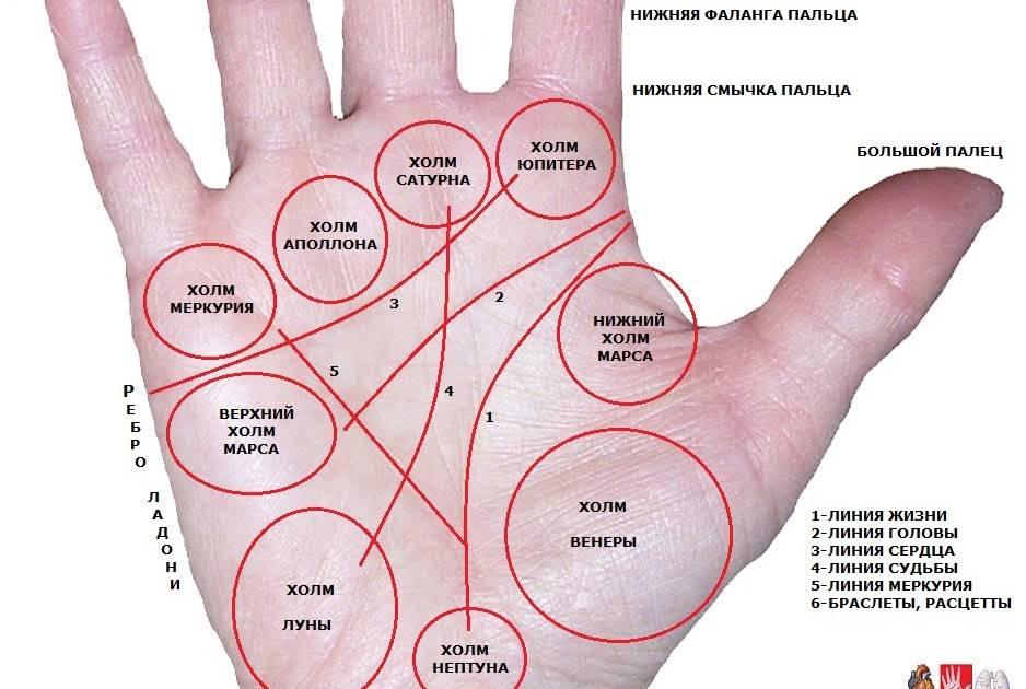 Линия здоровья на руке: расшифровка