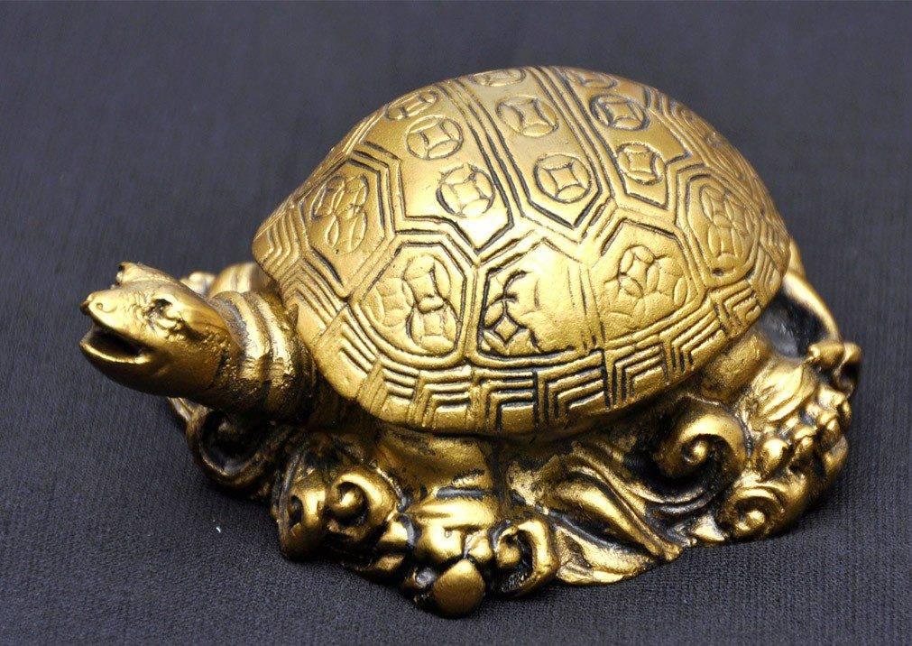 Какие камни подходят козерогам женщинам и мужчинам по знаку зодиака и гороскопу