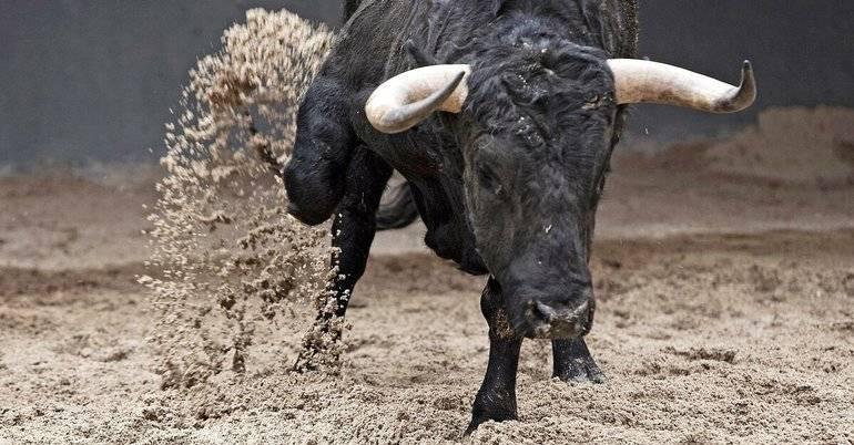 К чему снится черный бык женщинам - сонник и толкование