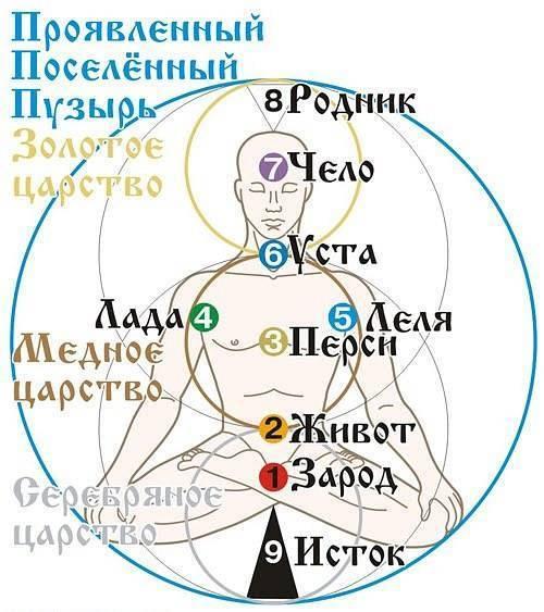 f76cef9e4e7c3495e3e84390514f1b68.jpg
