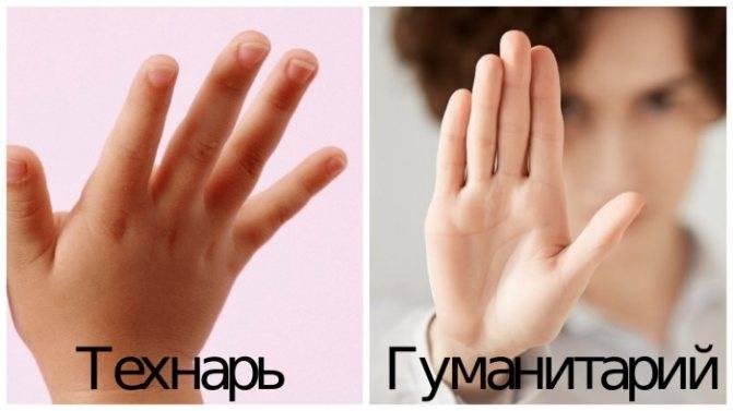 Длина пальцев на руках: о чем говорит размер указательного и безымянного пальцев, ключ к личности и судьбе