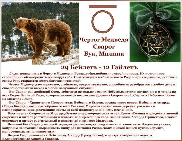 Чертог медведя: значение, описание и оберег