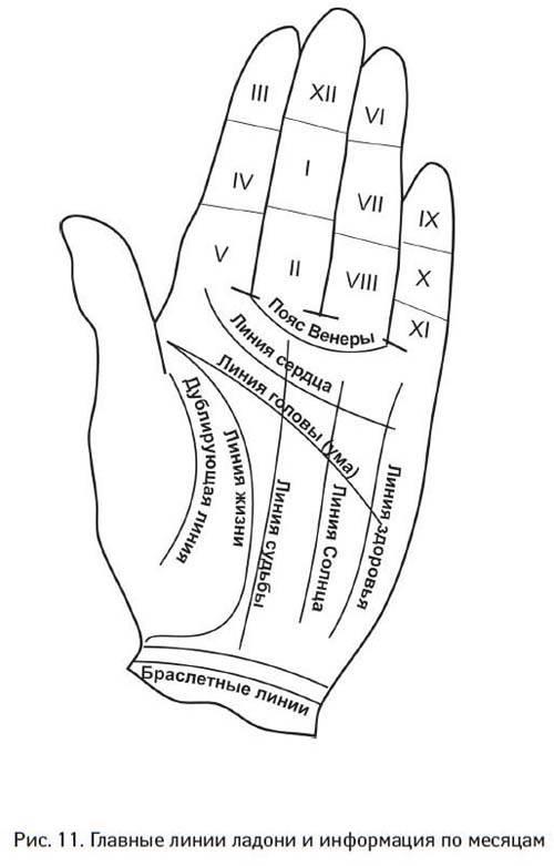 Гадание по руке: значение линий | vip magic