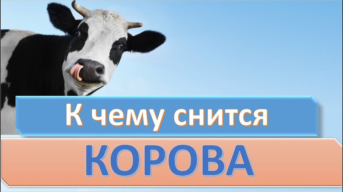 Сонник корова. к чему снится корова во сне женщине и мужчине