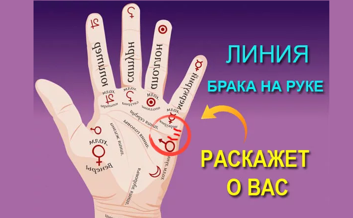 Линия богатства на руке: расположение и трактовка символов